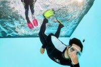 Freediving Basic